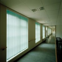 Green Hospital Blinds for Schools