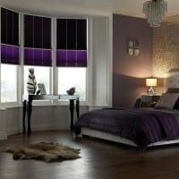 NIGHT-DAY-2D-retouch Pleated Blinds
